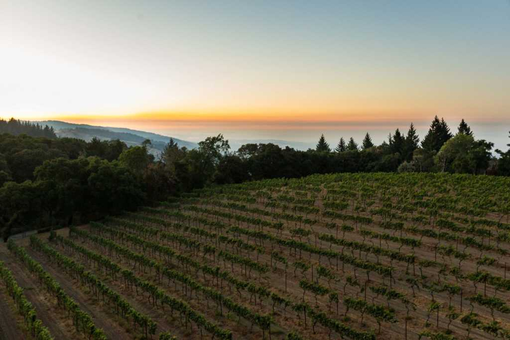 Explore the Santa Cruz Mountains Wine Region 1